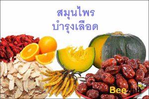 สมุนไพรบำรุงเลือด สมุนไพรดูแลเลือด สมุนไพรกระตุ้นการไหลเวียนของโลหิต สมุนไพรไทย