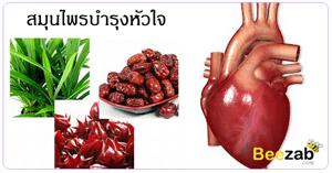 สมุนไพรบำรุงหัวใจ สมุนไพร สมุนไพรรักษาโรคหัวใจ รักษาโรคหัวใจ