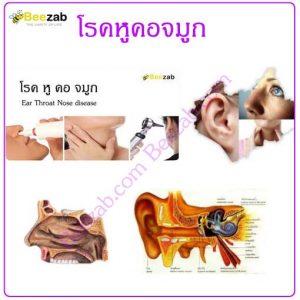 โรคหูคอจมูก โรคหู โรคคอ โรคจมูก