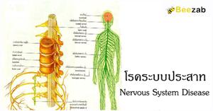 โรคระบบประสาท โรคประสาท ระบบควบคุมร่างกาย การรักษาโรค