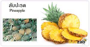 สับปะรด สมุนไพร ผลไม้ ประโยชน์ของสับปะรด
