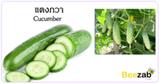 แตงกวา สมุนไพร พืชสวนครัว ประโยชน์ของแตงกวา