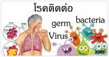 โรคติดต่อ โรคต่างๆ การรักษาโรค โรคระบาด