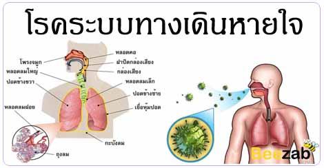 โรคทางเดินหายใจ โรคติดเชื้อ โรคระบบทางเดินหายใจ โรคปอด