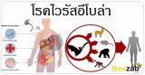 โรคอีโบล่า โรคติดต่อ โรคติดเชื้อ ติดเชื้อไวรัสอีโบล่า