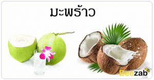 มะพร้าว ผลไม้ สมุนไพร สรรพคุณของมะพร้าว