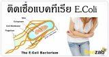 อีโคไล ท้องเสีย โรคติดเชื้อ โรคระบบทางเดินอาหาร