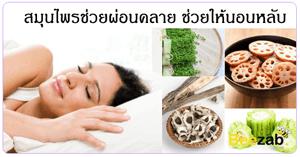 สมุนไพรช่วยผ่อนคลาย สมุนไพรช่วยให้นอนหลับ แก้นอนไม่หลับ นอนไม่หลับ