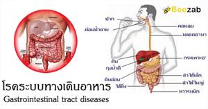 โรคระบบทางเดินอาหาร โรคช่องท้อง โรคระบบย่อยอาหาร โรคระบบขับถ่าย