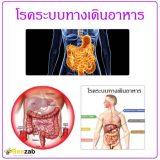 โรคระบบทางเดินอาหาร โรคทางเดินอาหาร โรคในช่องท้อง โรค