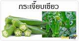 กระเจี๊ยบเขียว ผักสด สมุนไพร สรรพคุณของกระเจี๊ยบเขียว