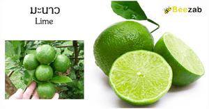 มะนาว สมุนไพร พืชสวนครัว ประโยชน์ของมะนาว