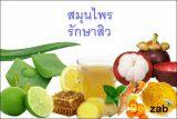 สมุนไพรรักษาสิว สมุนไพรบำรุงใบหน้า สมุนไพร สมุนไพรไทย