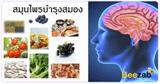 สมุนไพรสมองและระบบประสาท สมุนไพร สมุนไพรไทย