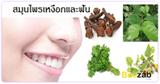 สมุนไพรบำรุงเหงือกและฟัน สมุนไพร สมุนไพรไทย
