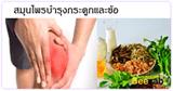 สมุนไพรบำรุงข้อและกระดูก สมุนไพร สมุนไพรไทย