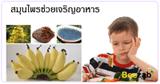สมุนไพรช่วยเจริญอาหาร สมุนไพร สมุนไพรไทย