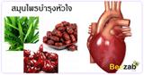สมุนไพรบำรุงหัวใจ สมุนไพร สมุนไพรไทย