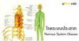 โรคระบบประสาท โรคต่างๆ โรคมีอะไรบ้าง การรักษาโรค