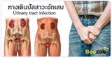 ทางเดินปัสสาวะอักเสบ โรคระบบทางเดินปัสสาวะ โรคติดเชื้อ โรคทางเดินอาหาร