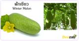 ฟักเขียว สมุนไพร สมุนไพรไทย ผักสวนครัว