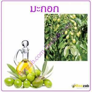 มะกอก สมุนไพร สมุนไพรไทย น้ำมันมะกอก