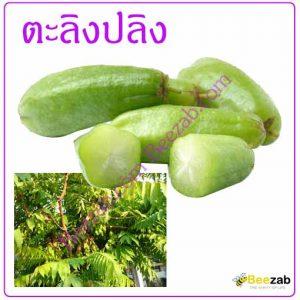 ตะลิงปลิง สมุนไพรรสเปรี้ยว สมุนไพร ผลไม้