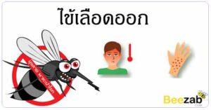 โรคไข้เลือดออก โรคติดเชื้อ โรคติดต่อ โรคต่างๆ