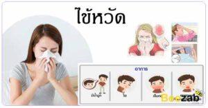 ไข้หวัด โรคหวัด โรคติดต่อ โรคติดเชื้อ